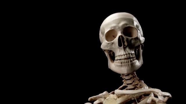skeleton talking - i̇nsan i̇skeleti stok videoları ve detay görüntü çekimi