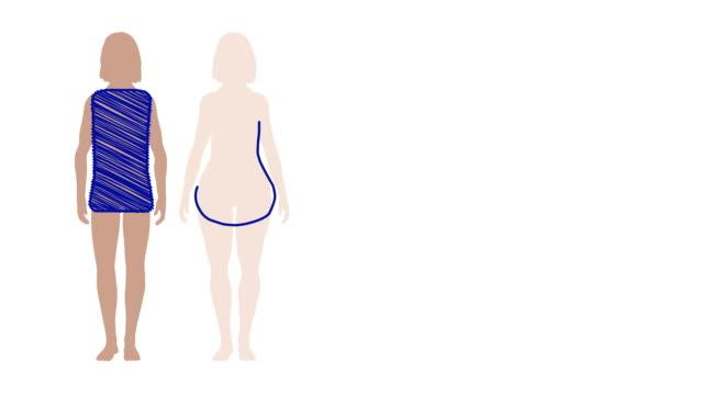 Boceto animación hembra bodyshapes - vídeo