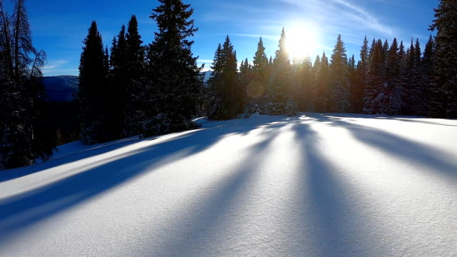 Skiing the Backcountry Powder Snow