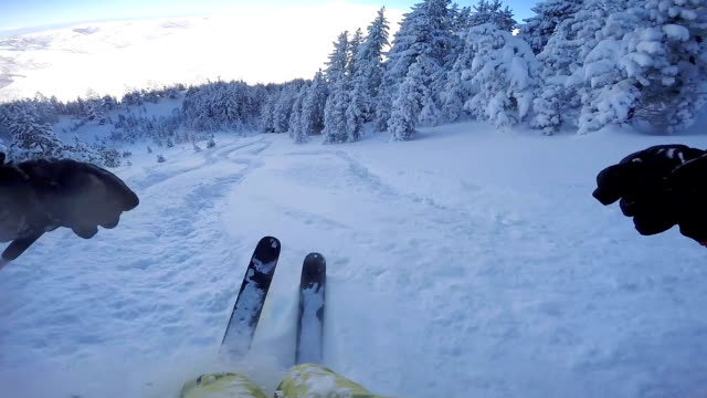 fpv: skiing through freshly snowed forest in beautiful mountain ski resort - sci video stock e b–roll