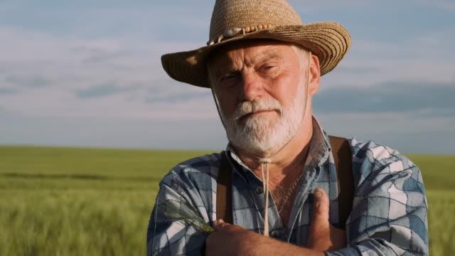 skilled old farmer. agriculture, farming concept. - farmer video stock e b–roll