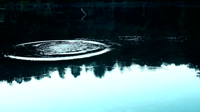 skimming stones on lake surface - pietra roccia video stock e b–roll