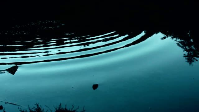 vídeos y material grabado en eventos de stock de piedras en la superficie del lago el desnatar - charca