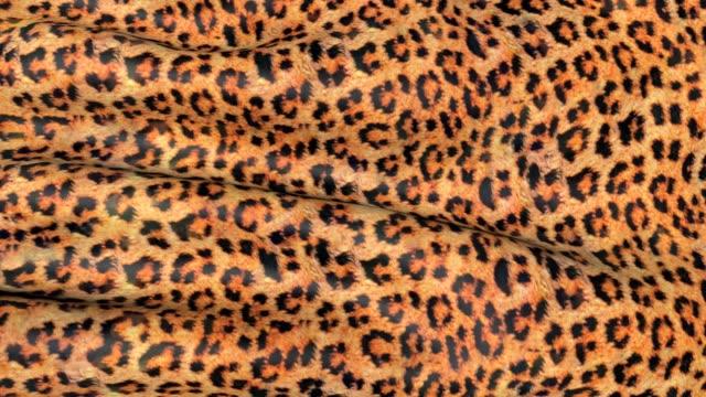 huden på en leopard i rörelse. - päls textil bildbanksvideor och videomaterial från bakom kulisserna