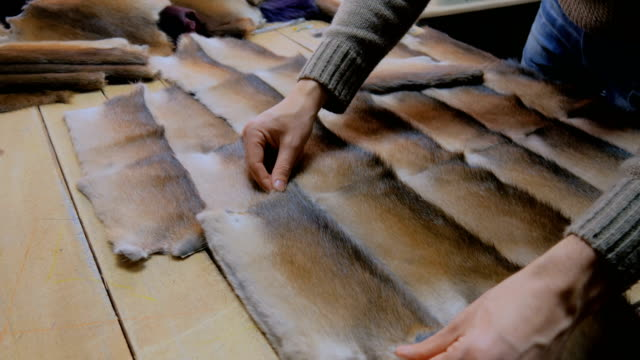 vídeos y material grabado en eventos de stock de skinner trabaja con piel piel de visón - peludo