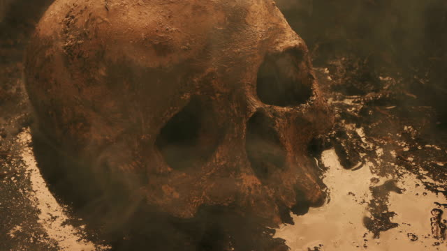 Skull In Hot Dirty Swamp video