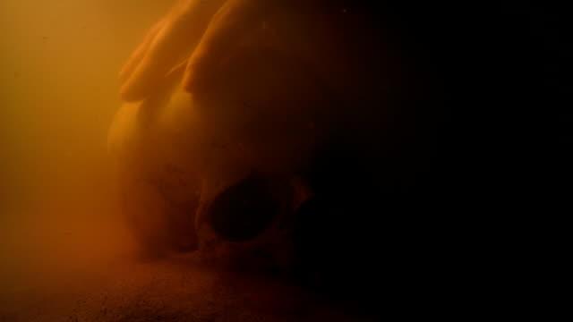 skull is picked up underwater - кораблекрушение стоковые видео и кадры b-roll