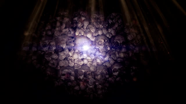 skull lights textures - family trees stock videos and b-roll footage