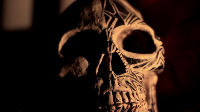 Skull Spooky Skull. animal skeleton stock videos & royalty-free footage
