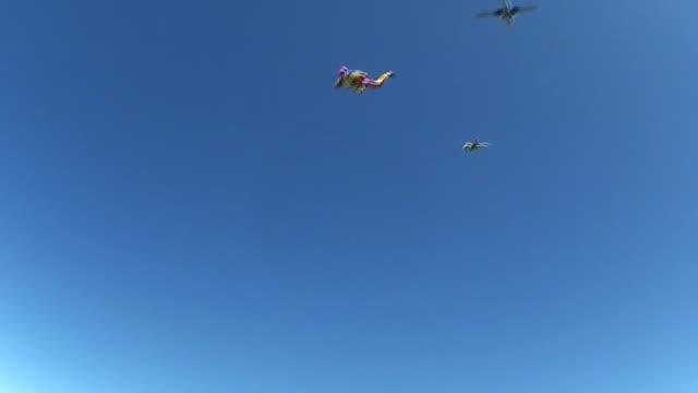 Skydiving video 128 video