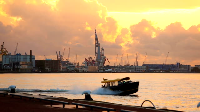 skyline rotterdam industy at sunset - rotterdam video stock e b–roll