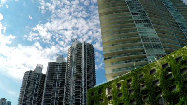 Skyscrapers and modern block of flats buildings in big city video