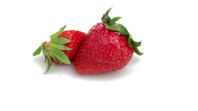 vídeos de stock e filmes b-roll de sliced strawberry isolated - baga