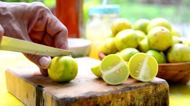 разделение и задействуя лимонный - лимонный сок стоковые видео и кадры b-roll