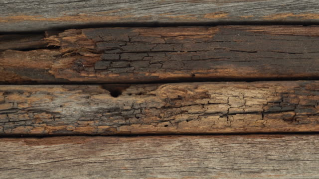 slide shot of wood texture