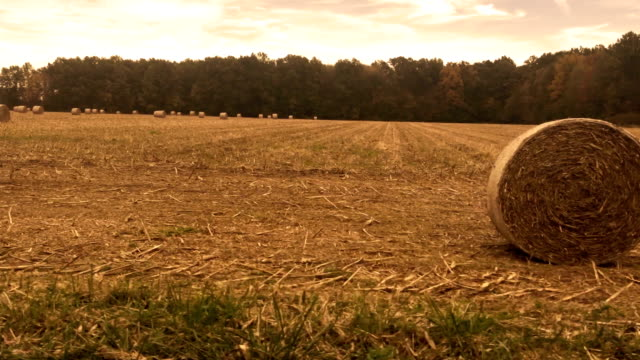 Sliding past color graded hay bales in the countryside of Ohio - Graded Version video