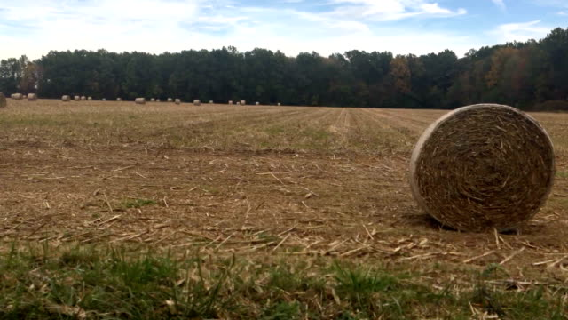 Sliding past hay bales in the countryside of Ohio video