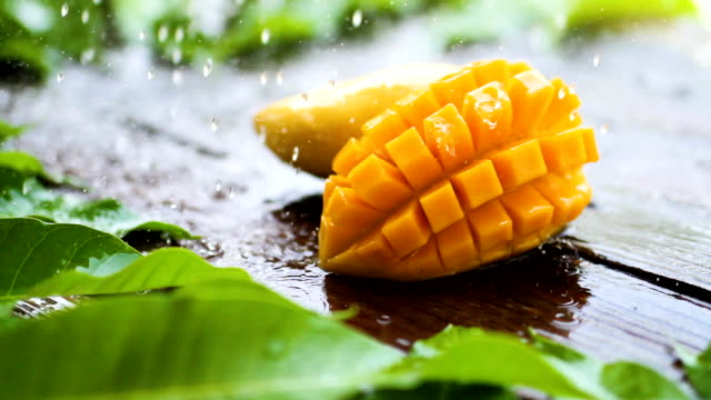 Sliece fresh yellow mango tropical fruit with rain drop on wooden table Slice fresh yellow mango fruit with tropical green leaf on wooden table and rain drop, splashing water on slice mango mango stock videos & royalty-free footage