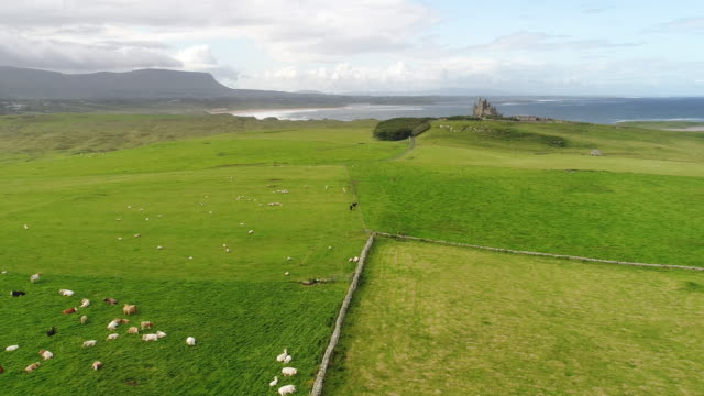 vídeos de stock e filmes b-roll de sligo, ireland - aerial view of mullaghmore - castle