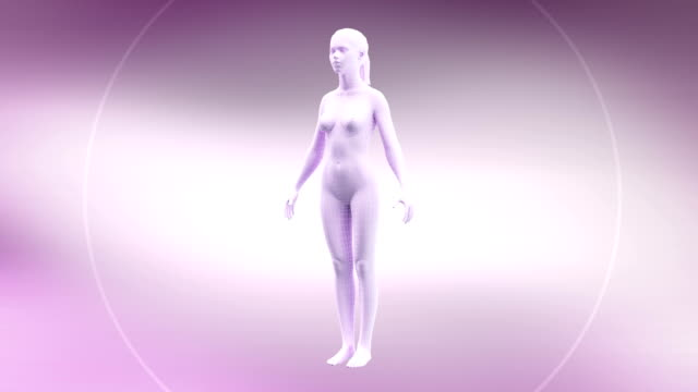 HD: Slim body animation video