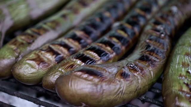 slo mo baking eggplant - melanzane video stock e b–roll