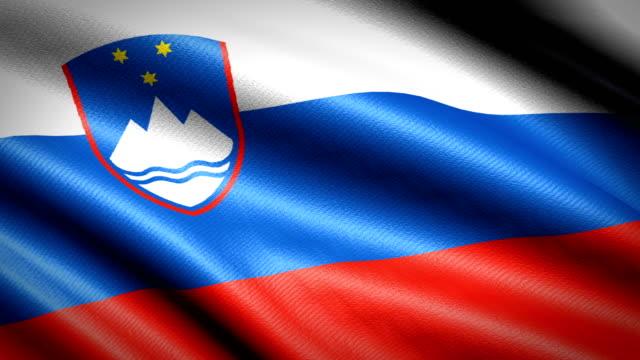 スロベニアの旗。シームレスなループ アニメーション。4 k 高精細ビデオ - スロベニア点の映像素材/bロール