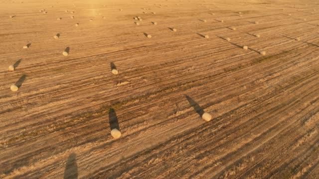 Langsame Luftaufnahme des Feldes mit Strohballen in goldenen Sonnenuntergang oder Sonnenaufgang. – Video