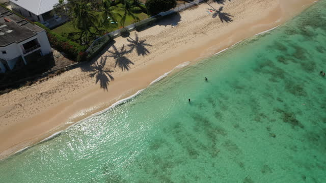 Slow diagonal drone shot of idyllic Caribbean beach and palm trees video