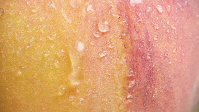 Slow drops flow down the peach skin close-up