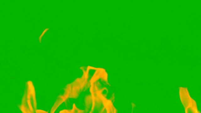 vídeos de stock, filmes e b-roll de queima lenta de fogo brilhando no fundo da tela verde, tempestade de fogo sobre combustível na parede verde, energia de calor quente na natureza, chama quente que riasing energia lenta e alta potência - fogo