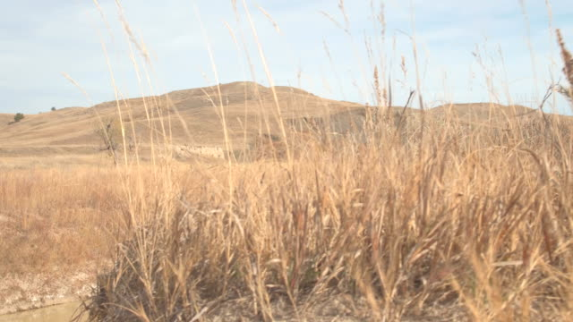 langsame fluß läuft durch trockenrasen prärielandschaften - afrikanische steppe dürre stock-videos und b-roll-filmmaterial