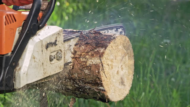 slow mo close up man sawing log with chainsaw - motosega video stock e b–roll