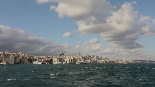 Slow moshn shooting gulls and waves in the Bosphorus, the ship sails by