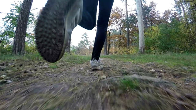 Slow motion. A woman doing sports in the forest. Enjoy running. video
