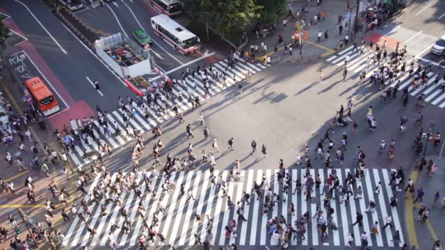 慢動作 鳥瞰日本東京澀谷的十字路口。 - 澀谷交叉點 個影片檔及 b 捲影像