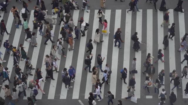 日本澀谷遊客的慢動作鳥瞰圖. - 澀谷交叉點 個影片檔及 b 捲影像