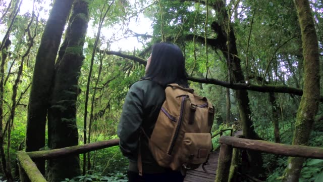 slow motion asian woman backpacker walking in rain forest natural trail