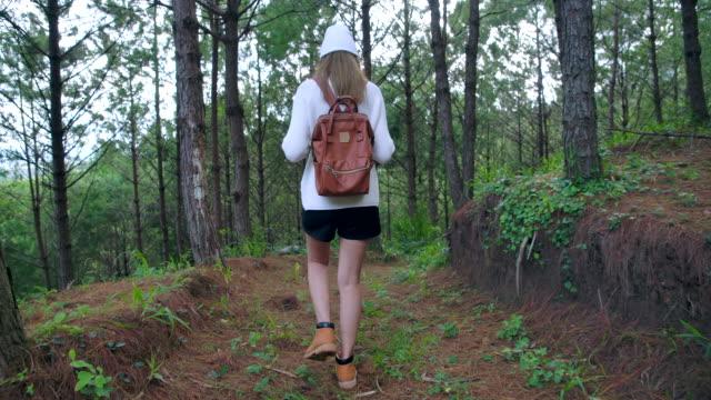 slow motion asiatisk kvinna som går i tallskogen - kameraåkning på räls bildbanksvideor och videomaterial från bakom kulisserna