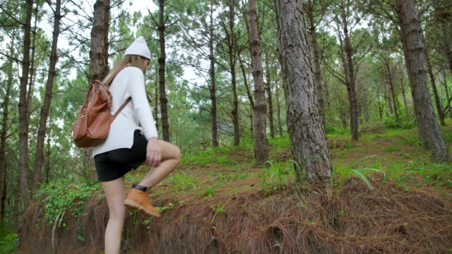 Slow motion Asian woman walking in the pine forest
