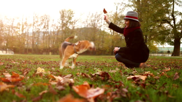 Slow motion autumnal footage: lady in the hat tames her beagle video