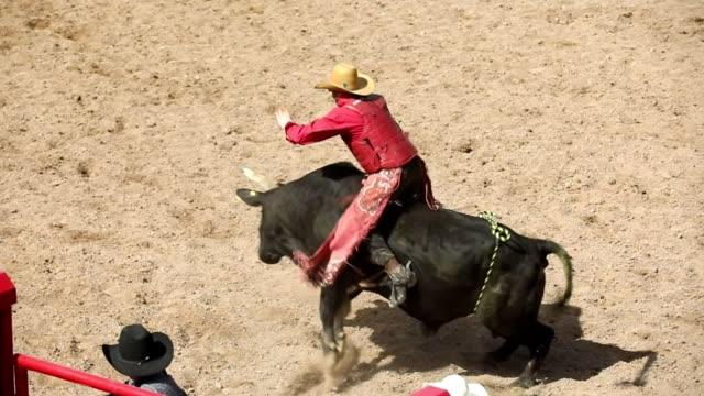 Slow-Motion Bull Ride Rodeo Arena – Video