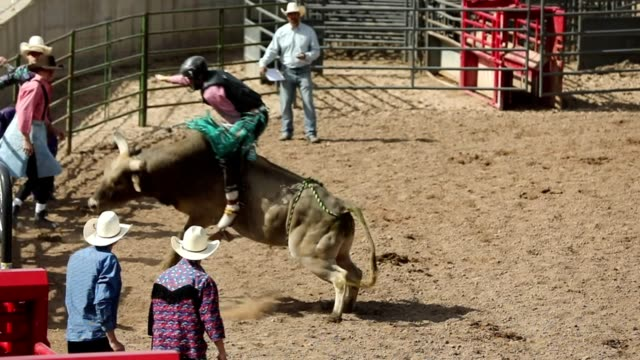 Slow Motion Bull Ride Rodeo Arena