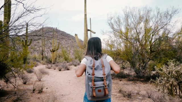 Slow motion camera follows young happy tourist woman with backpack exploring big Saguaro cactus desert at national park.