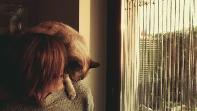 vidéos et rushes de slow motion: chat jouant sur l'épaule d'une femme belle souriante - femme seule s'enlacer