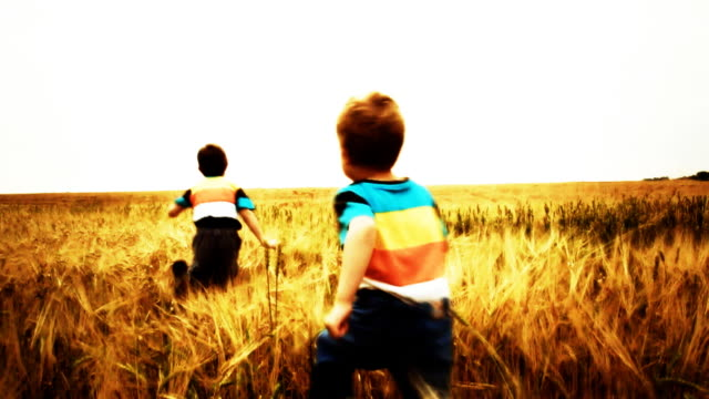 Slow Motion: Children Running In Wheat Field 720 p: Slow motion video of two little boys running in a golden wheat field. The clip was color graded. sepia toned stock videos & royalty-free footage