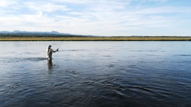 slowmotion klipp av en kvinna flugfiske henry's fork floden - gaffel bildbanksvideor och videomaterial från bakom kulisserna