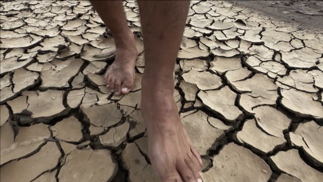 vídeos de stock e filmes b-roll de slow motion close up barefoot man walks through deserted land on cracked dry man naked feet walking on dry and crack soil background slow motion - descalço