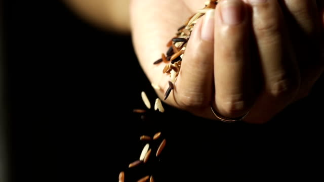 Slow motion, Close up cereal rice grains falling from woman's hand. Slow motion, Close up cereal rice grains falling from woman's hand. handful stock videos & royalty-free footage