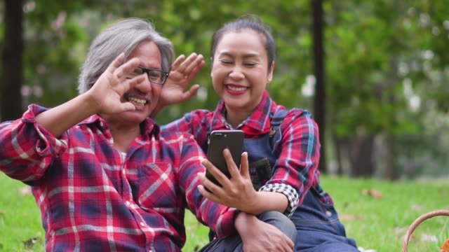 Slow motion: Couple video call by smart phone on grass field at rural scene.