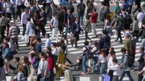 Slow motion Crowd Pedestrians crossing in Shibuya crossing in day time, Tokyo, Japan Slow motion Crowd Pedestrians crossing in Shibuya crossing in day time, Tokyo, Japan cultures stock videos & royalty-free footage
